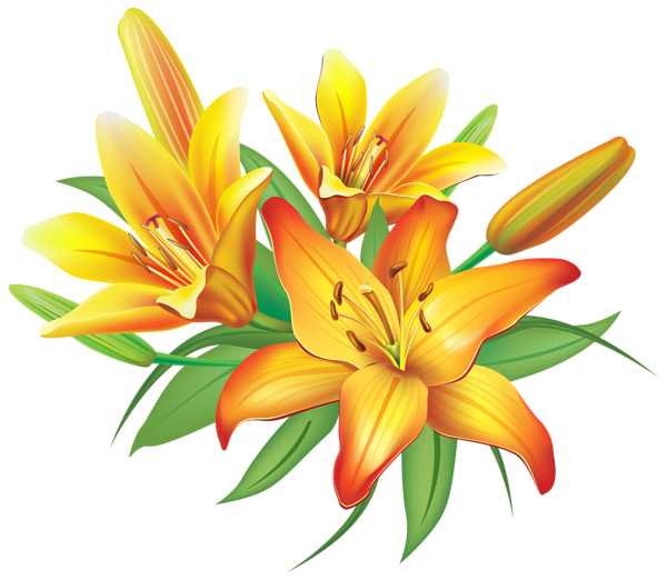 Decorative clipart november flower. Yellow lilies flowers decoration