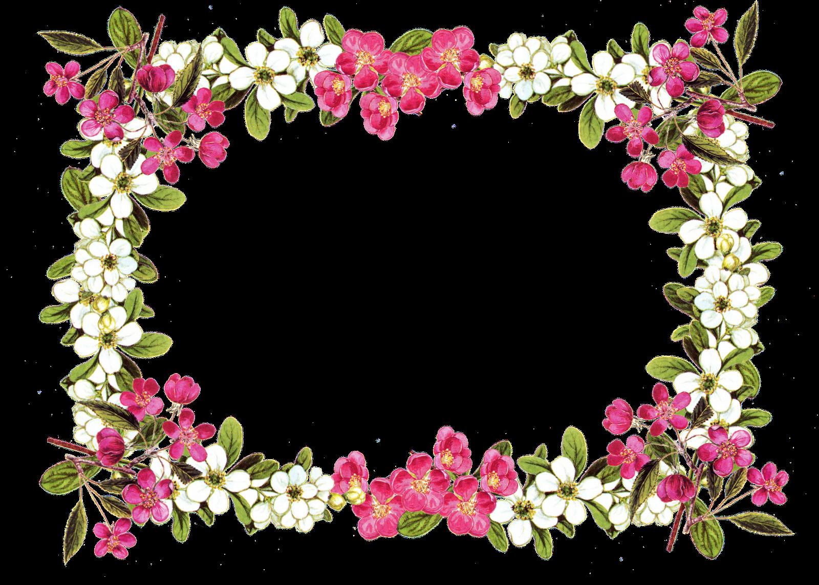 Flower borders png. Vintage frame border free