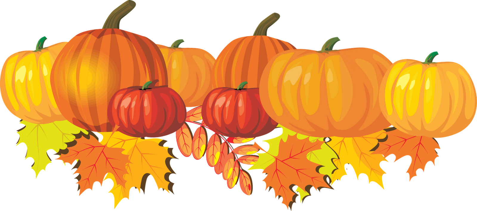 Pumpkin clipart row.  collection of patch