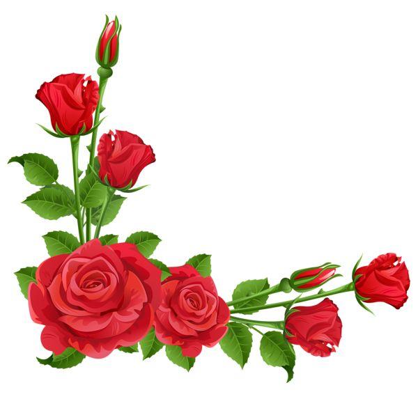 Free corner cliparts download. Rose clipart borders