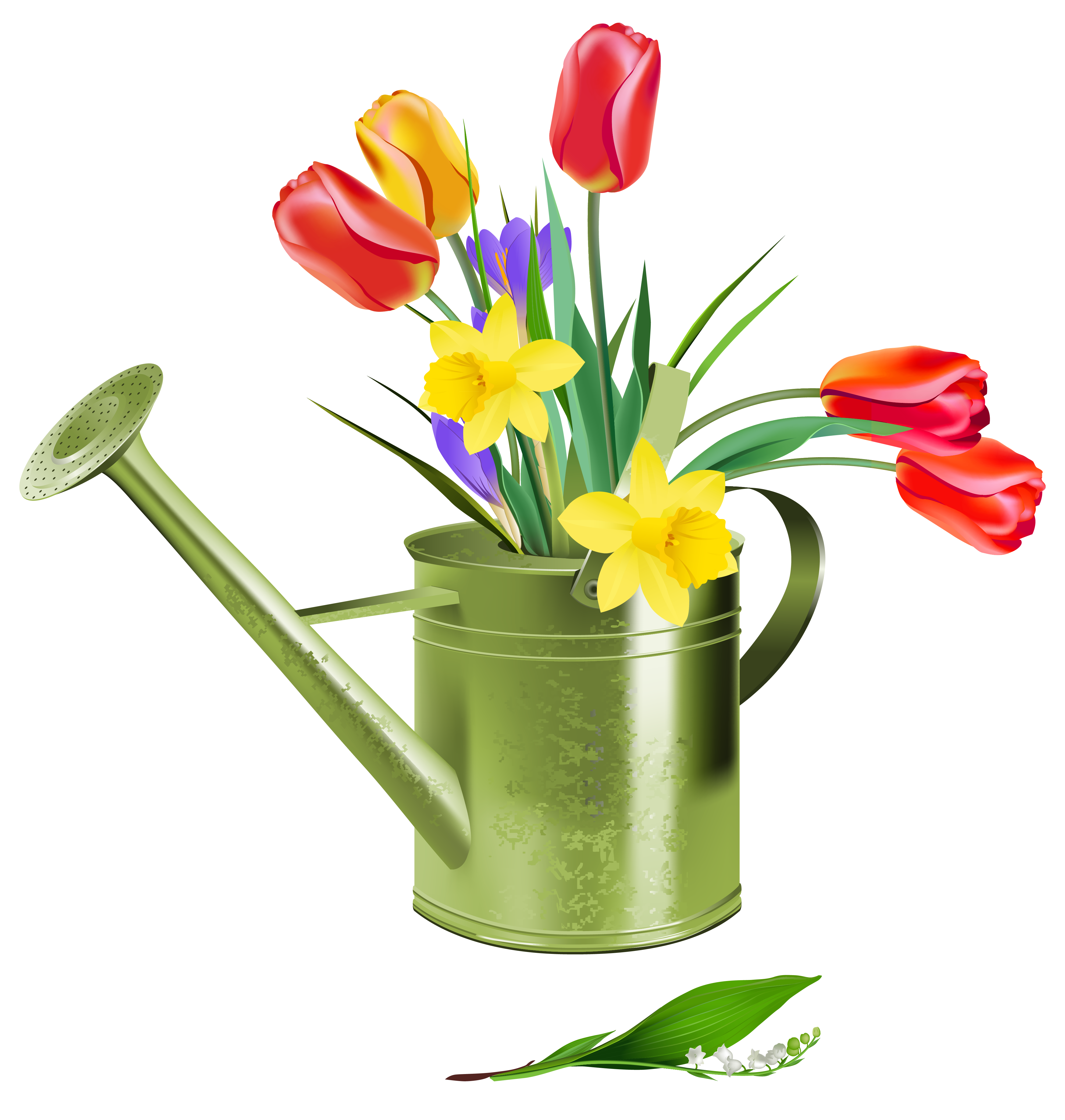 Vase clipart summer flower. Pictures of spring flowers