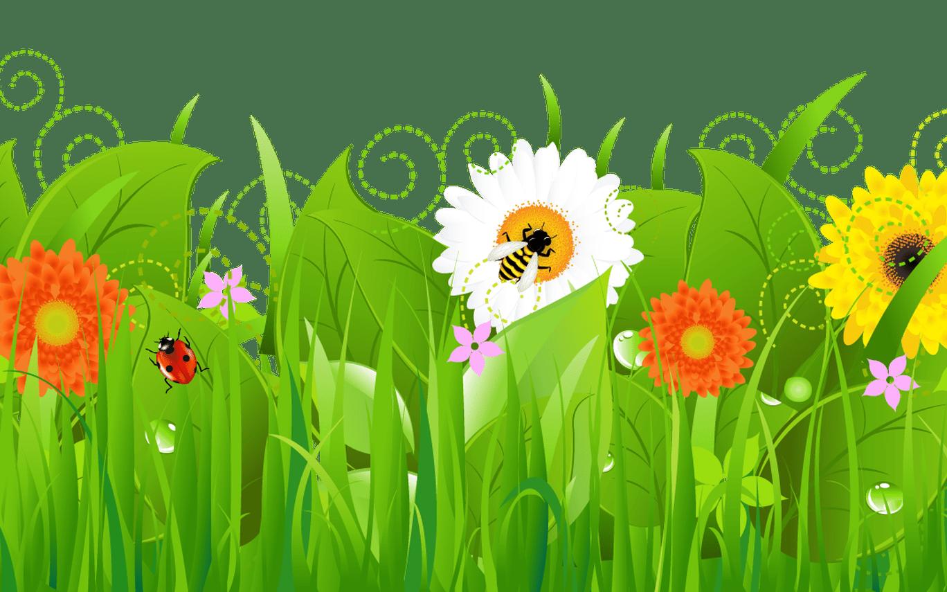 Garden grass clip art. Clipart borders vegetable