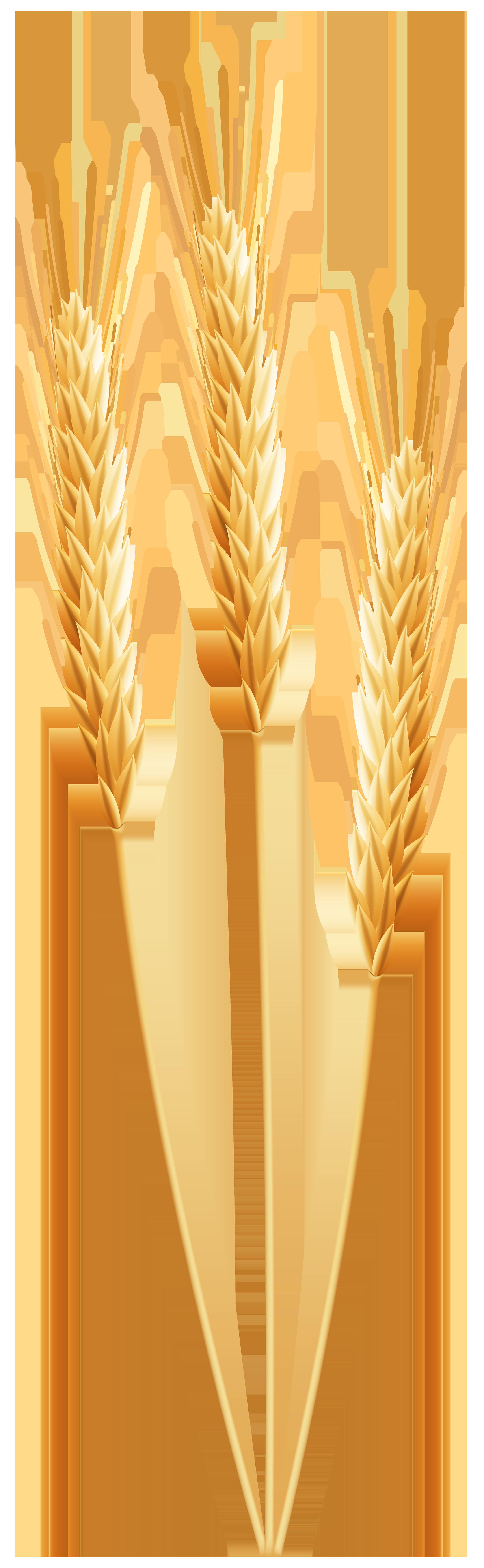 Wheat clipart bushel wheat. Png clip art image