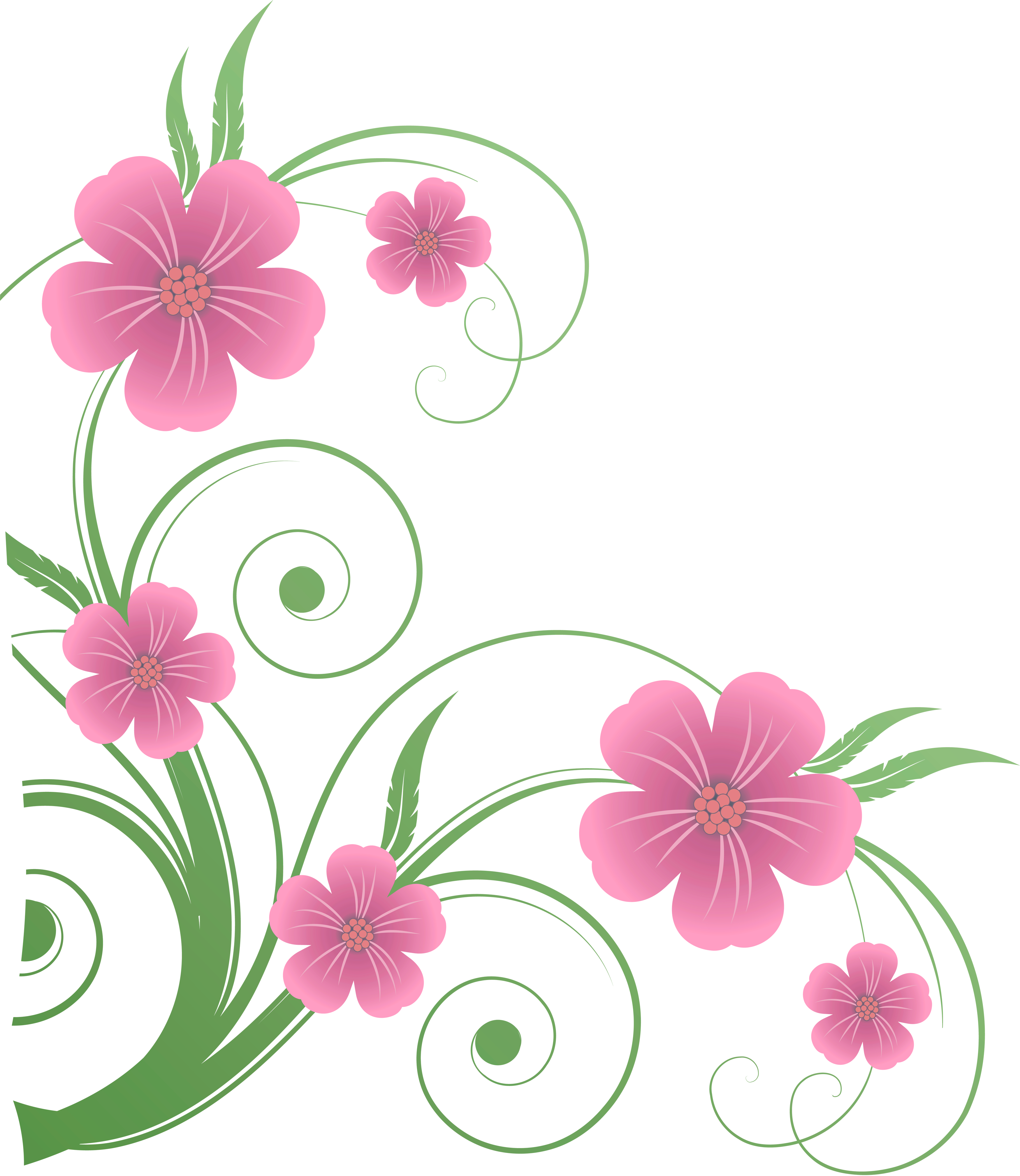 Flowers png decorative element. Name clipart flower