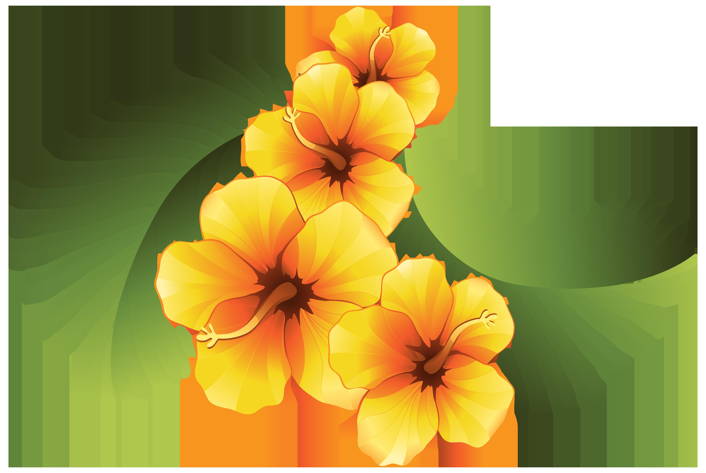 Exotic floral decoration transparent. Hawaiian clipart hawaiian pineapple