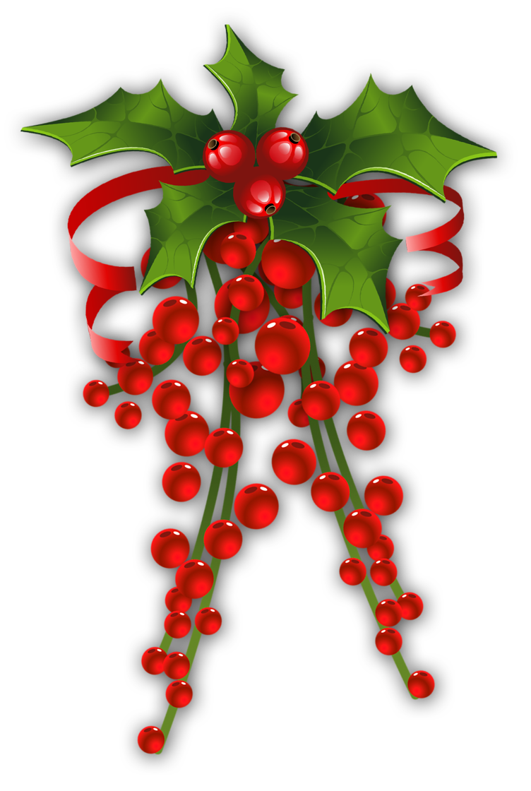 Clipart winter berry. Christmas holly clip art