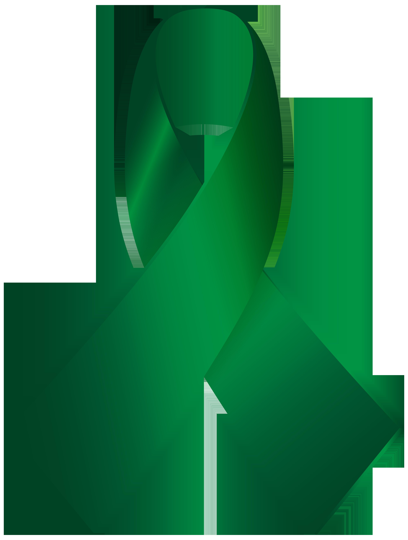 Awareness ribbon png clip. Clipart bow light green