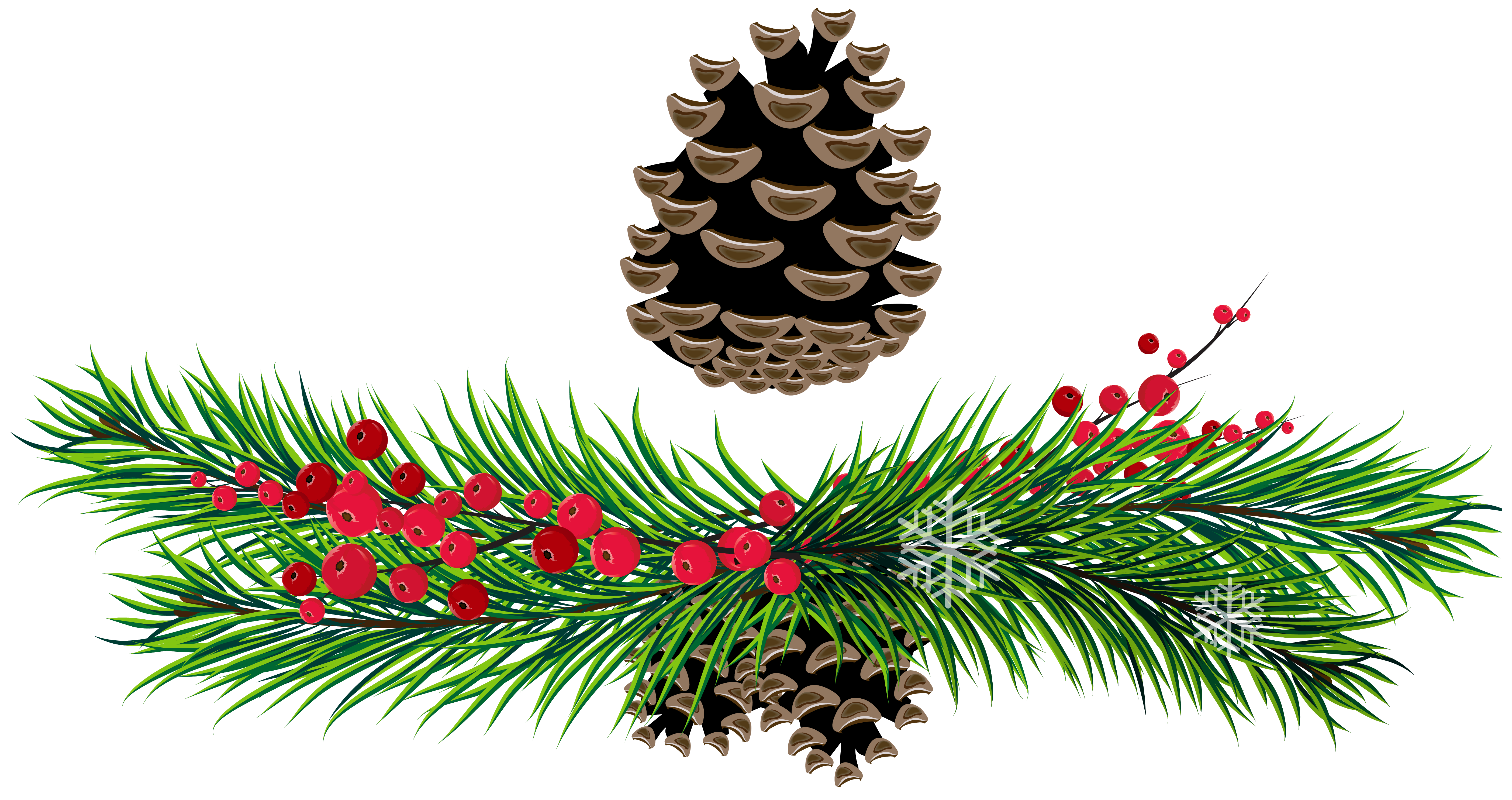Pine branches and cones. Holidays clipart pinecone