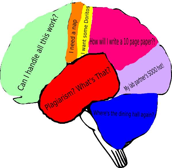 Working clipart paper works. Freshman fear brain clip