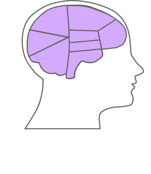 Head and outline clip. Clipart box brain