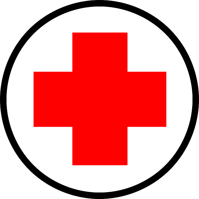 Heartbeat clipart doctor. Red cross image gibbon