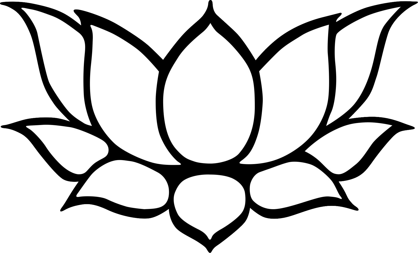 lotus clipart sketches