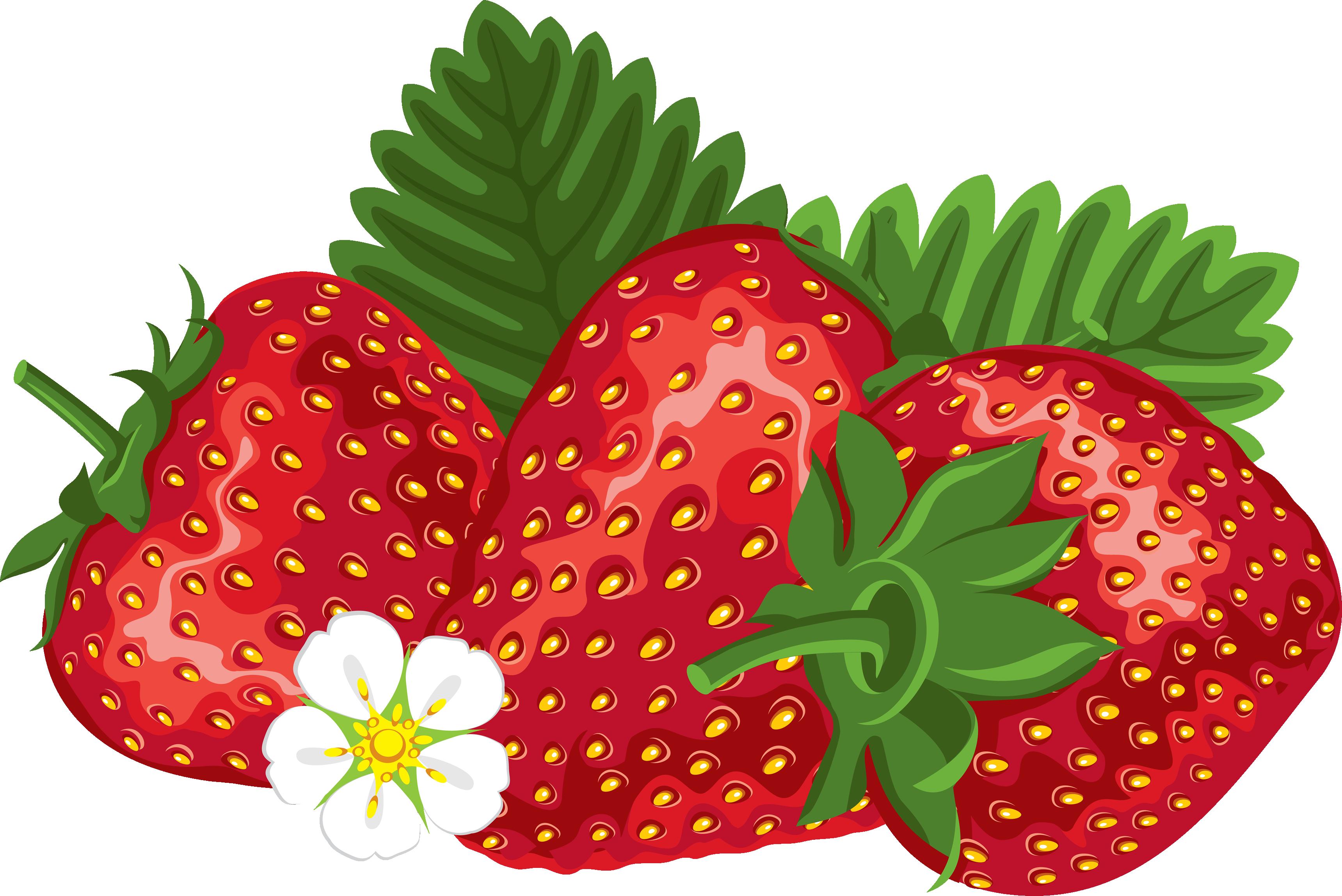 Strawberries clipart watermelon. Pin by luke on