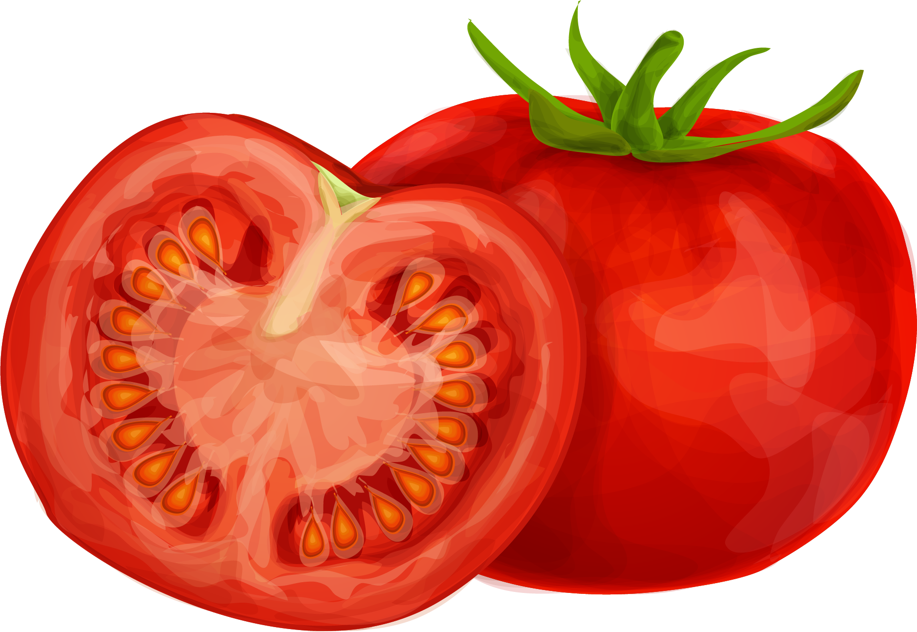 Tomatoes clipart two. Tomato png images transparent