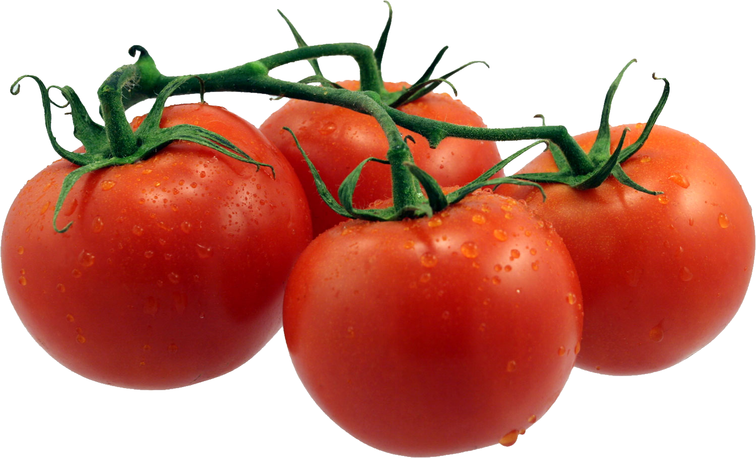 Tomatoes clipart box. Tomato transparent png file