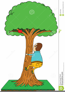 Tree clipart boy. Climbing free images at