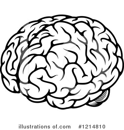 Clipart brain. Image royalty free illustration