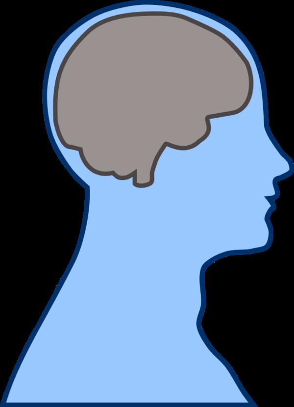 Human clipart human head. At getdrawings com free