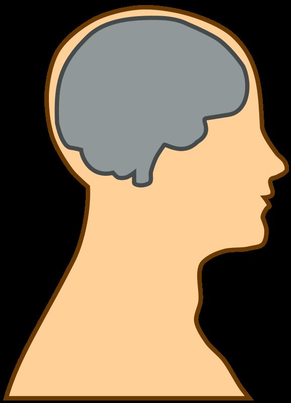 Clipart brain animated. Cartoon head silhouette clipground
