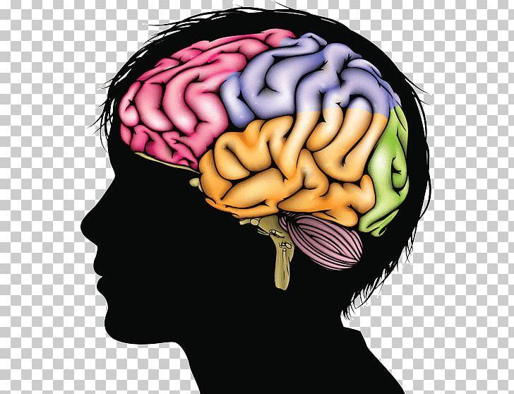 Psychological stress health protandim. Clipart brain brain development