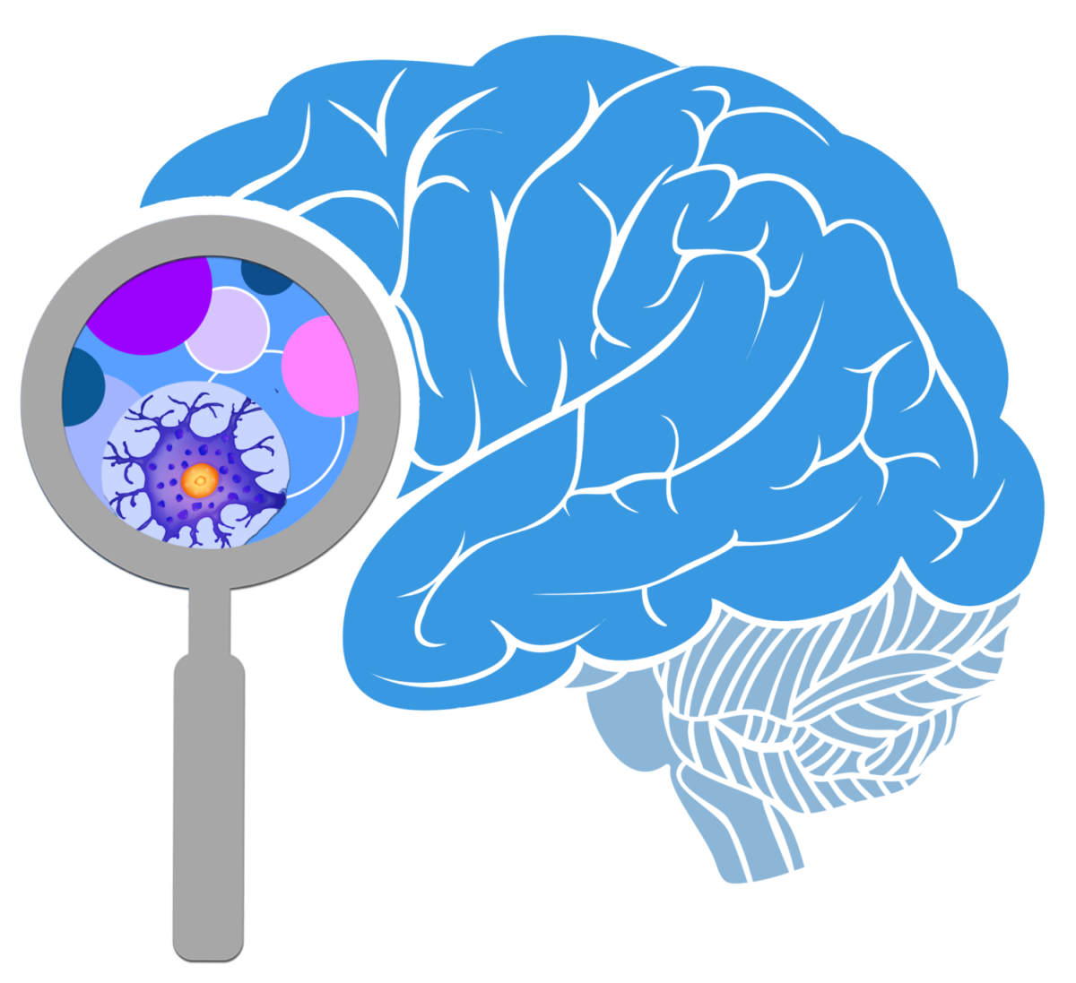 The initiative why study. Kid clipart brain