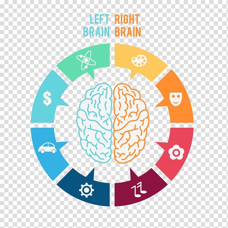 Clipart brain brain function. Lateralization of human