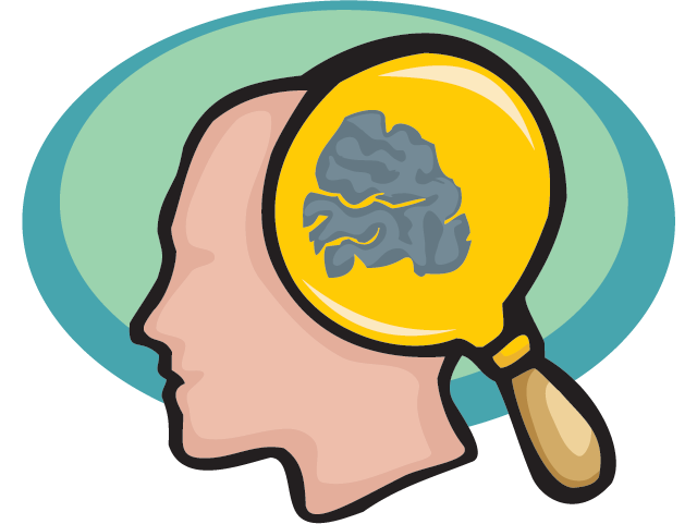 Skin clipart five sense. The brain facts science