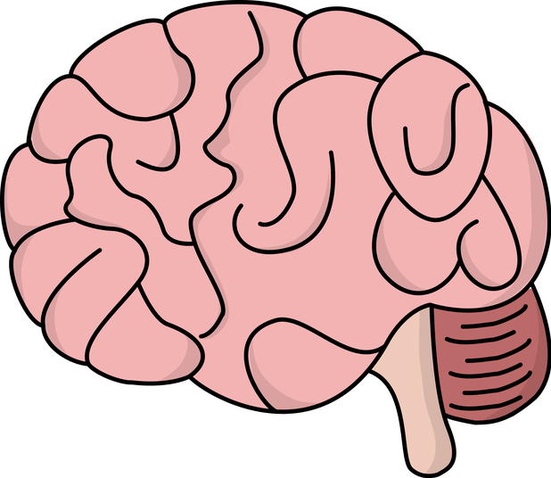 Person clipart brain. Cartoon cartoonview co pictures