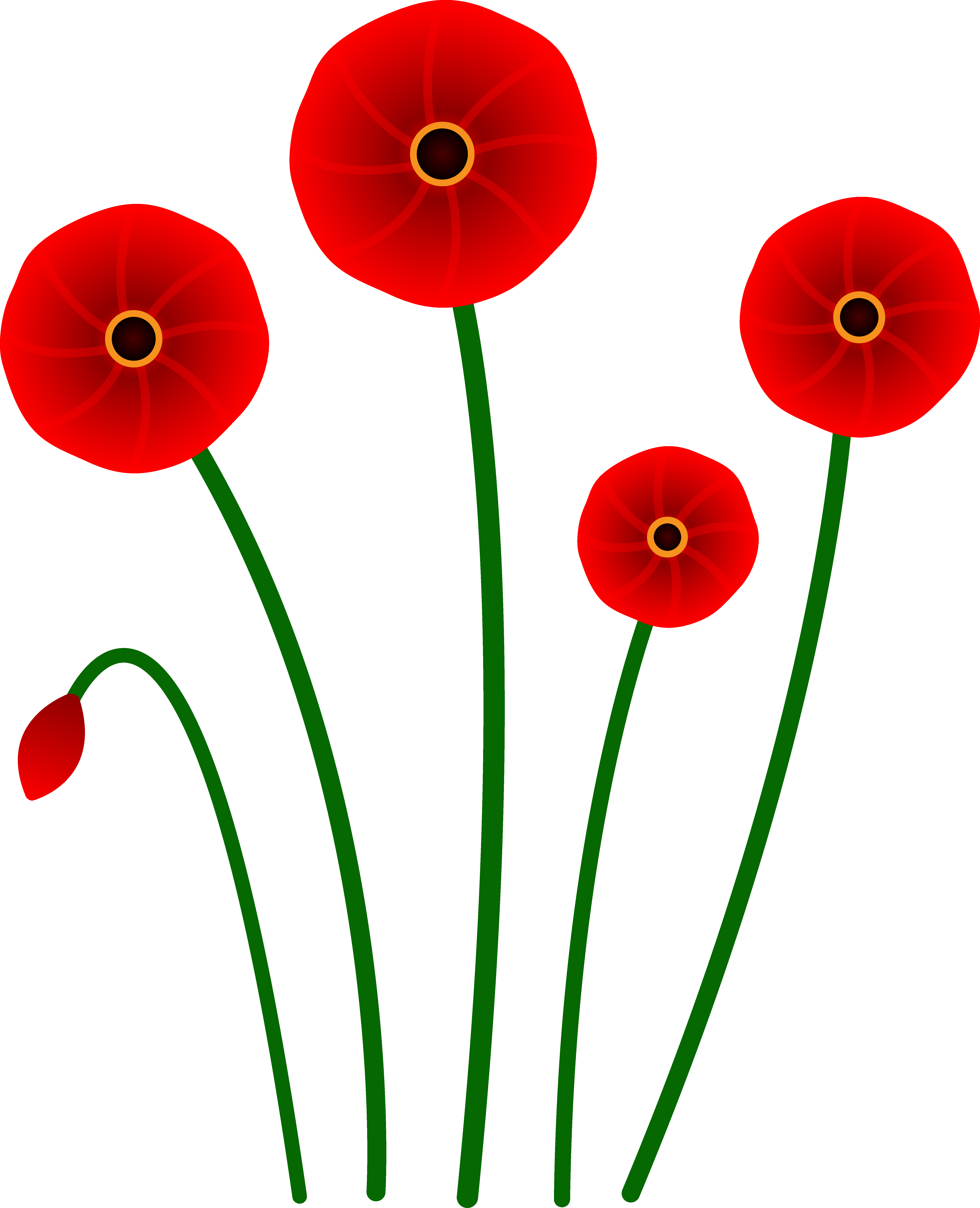 Plants clipart poppy. Imagination at getdrawings com