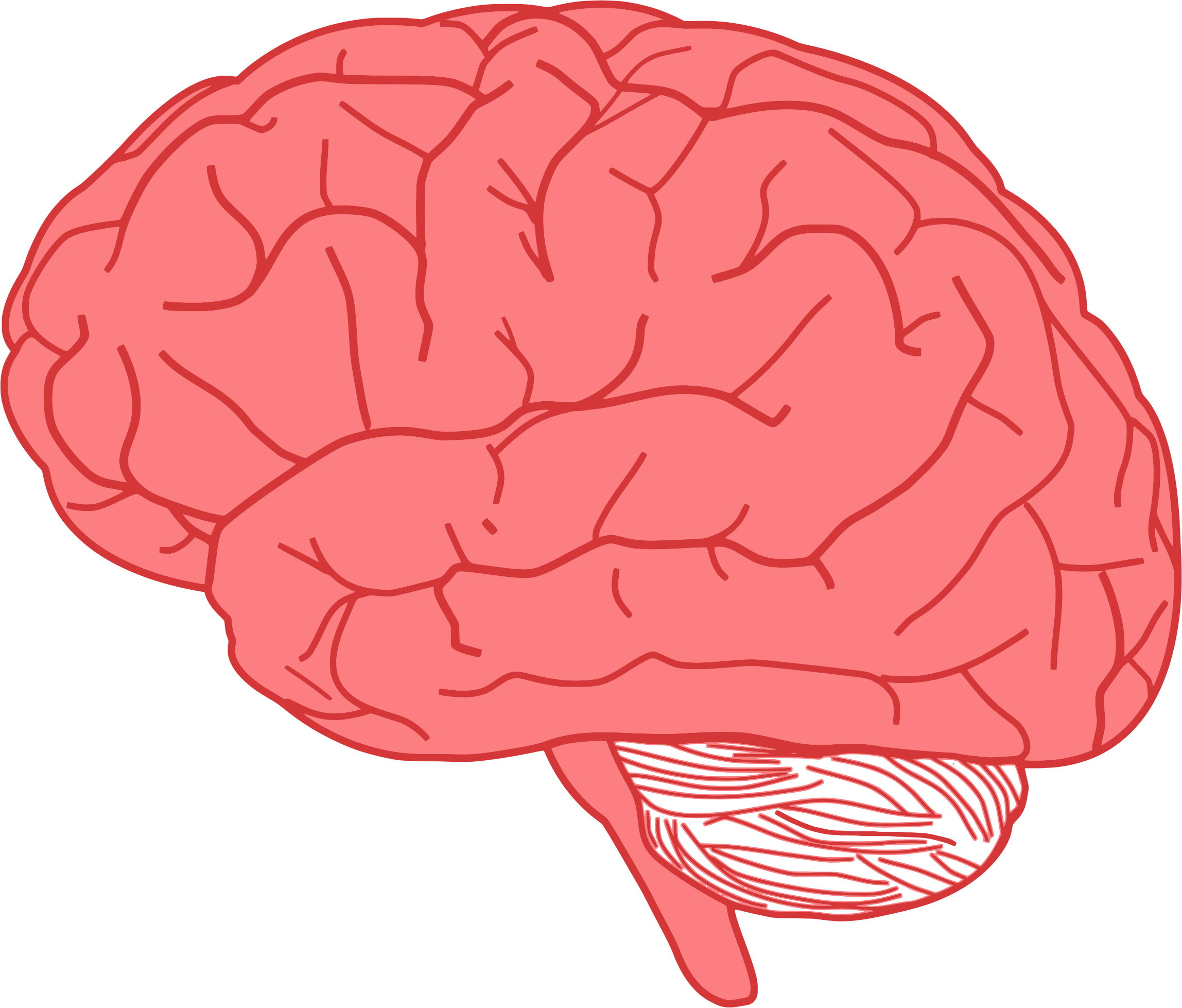 Profile optimized big image. Psychology clipart cool brain