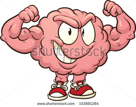 Clipart brain muscle. Muscular system free download