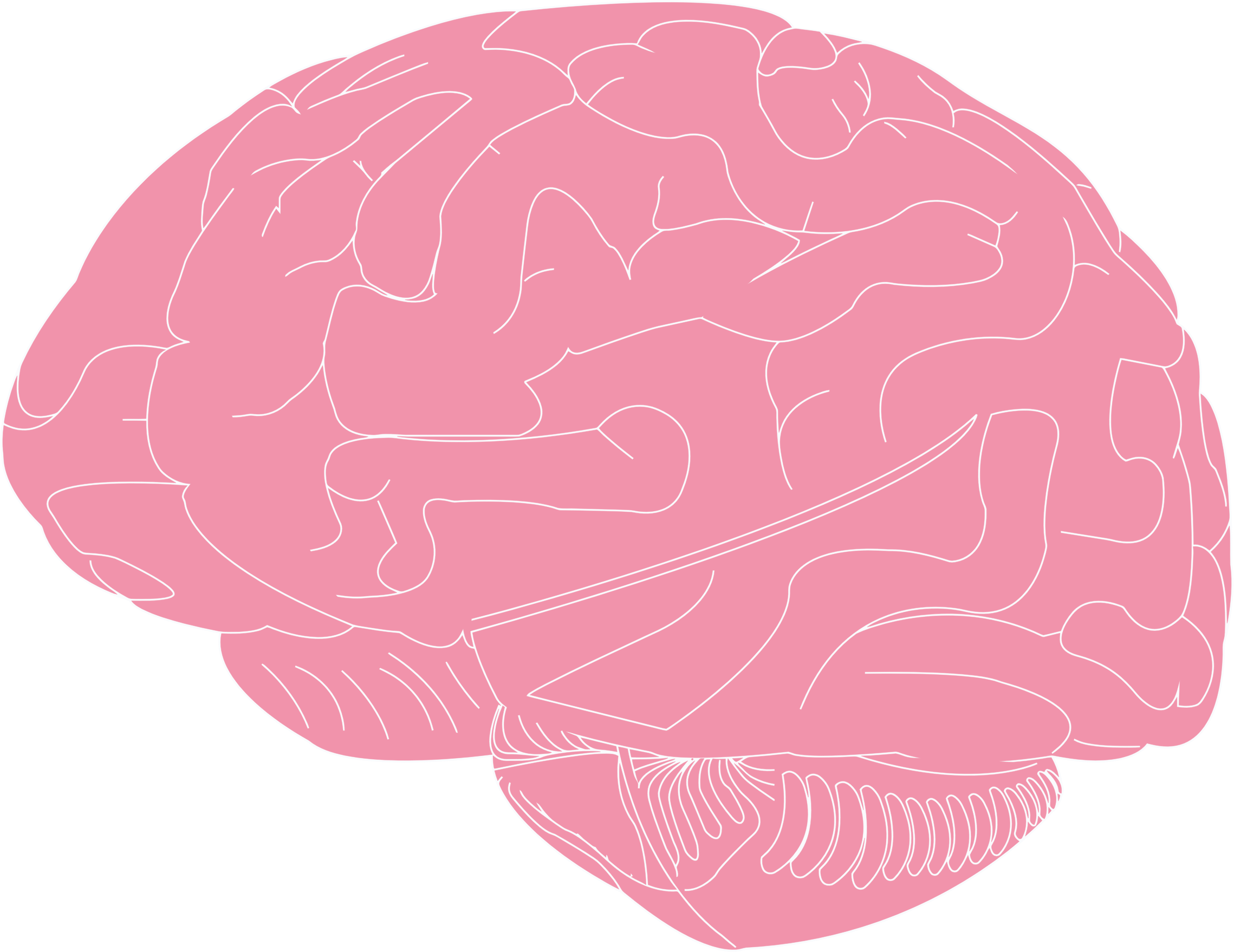 Brain big image png. Psychology clipart illustration