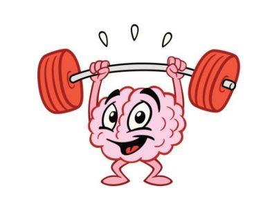 . Clipart brain muscle