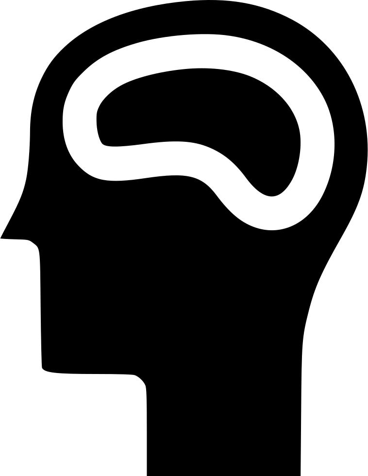 Memory study skill human. Clipart brain neurology