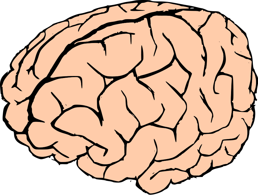 Clipart brain reading. Real letters format images