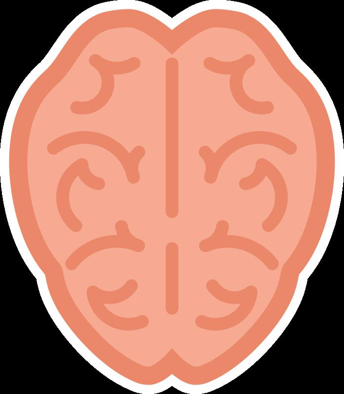 Medium image png . Clipart brain simple