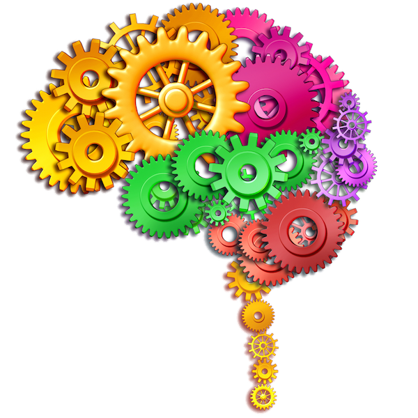 Clipart brain tool. Dr fotuhi s fitness