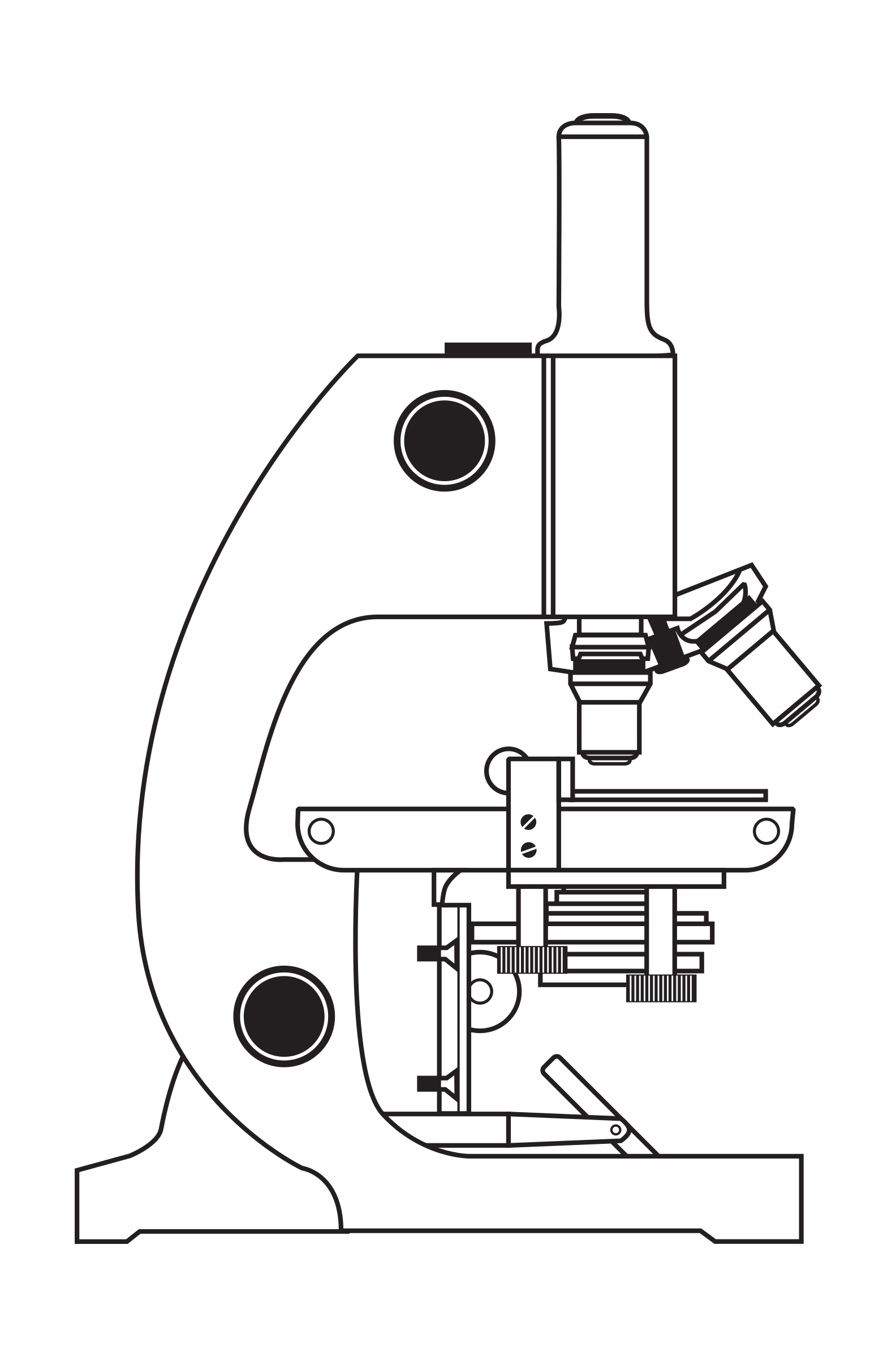 Clipart brain tool. Microscope without coloring big