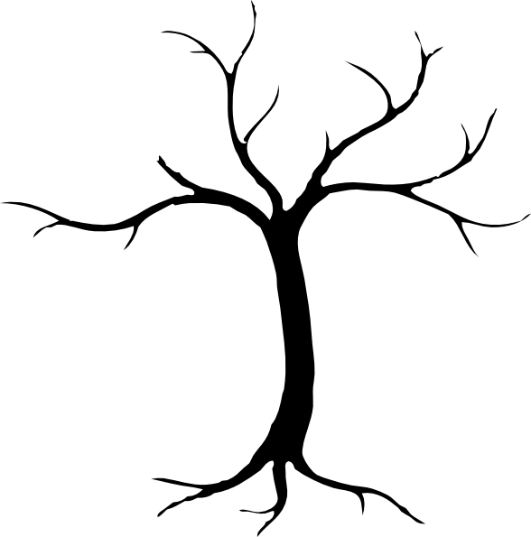 clipart tree cross section