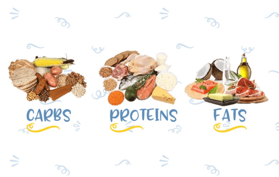 grains clipart simple carbohydrate