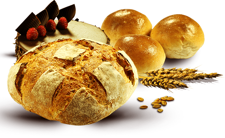 Gaston s bakery less. Clipart bread dinner roll