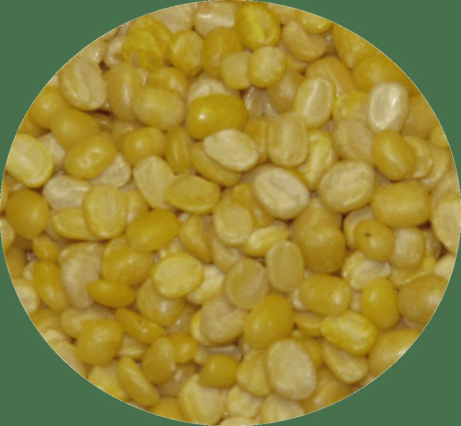 Zucchini clipart zucchini bread. Indian khana made easy