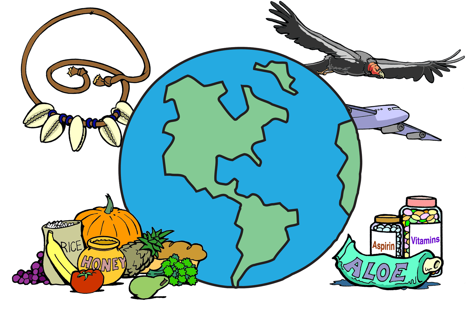 Bio benefits ology science. Fossil clipart anthropology
