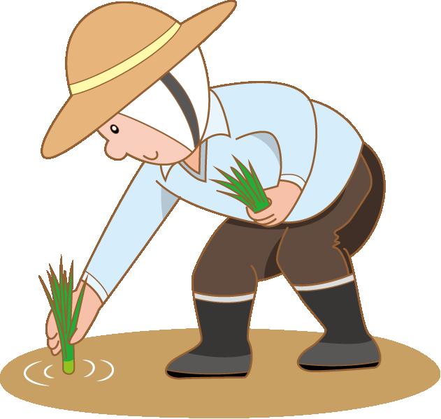 Farmer paddy field clip. Farmers clipart rice plantation