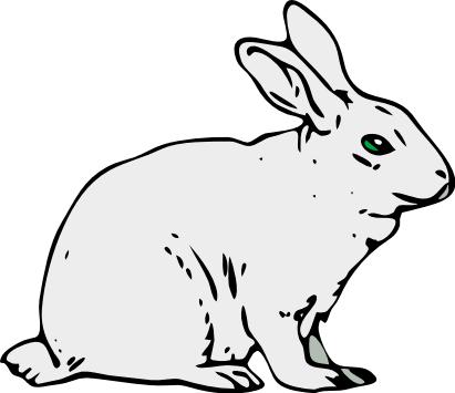 Free cliparts download clip. Clipart rabbit arctic hare