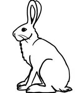 Clipart rabbit arctic hare. Free cliparts download clip