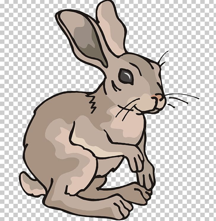Cartoon png animals . Clipart rabbit arctic hare