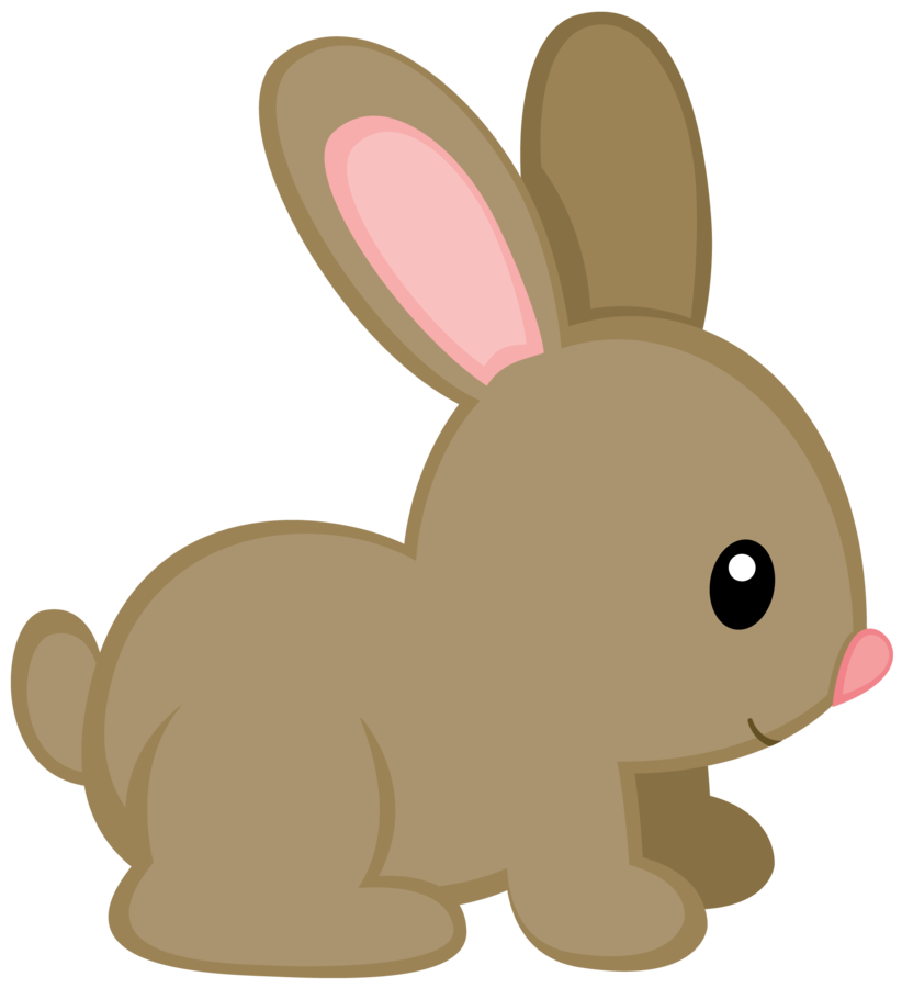 Bunny frames illustrations hd. Woodland clipart frond