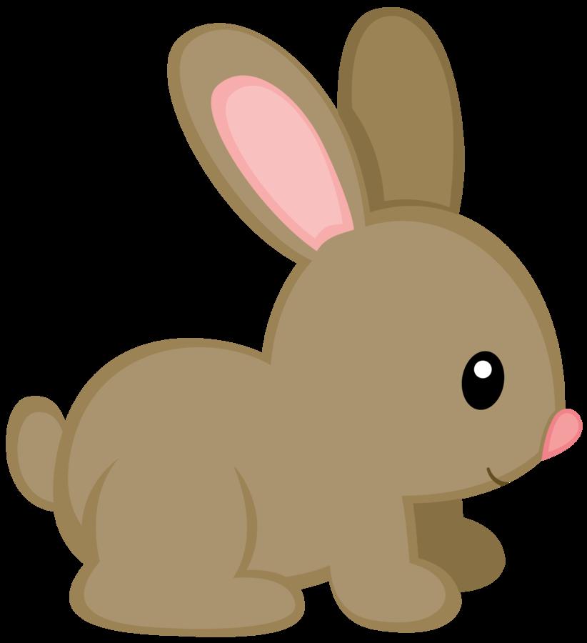 Woodland frames illustrations hd. Clipart bunny boho
