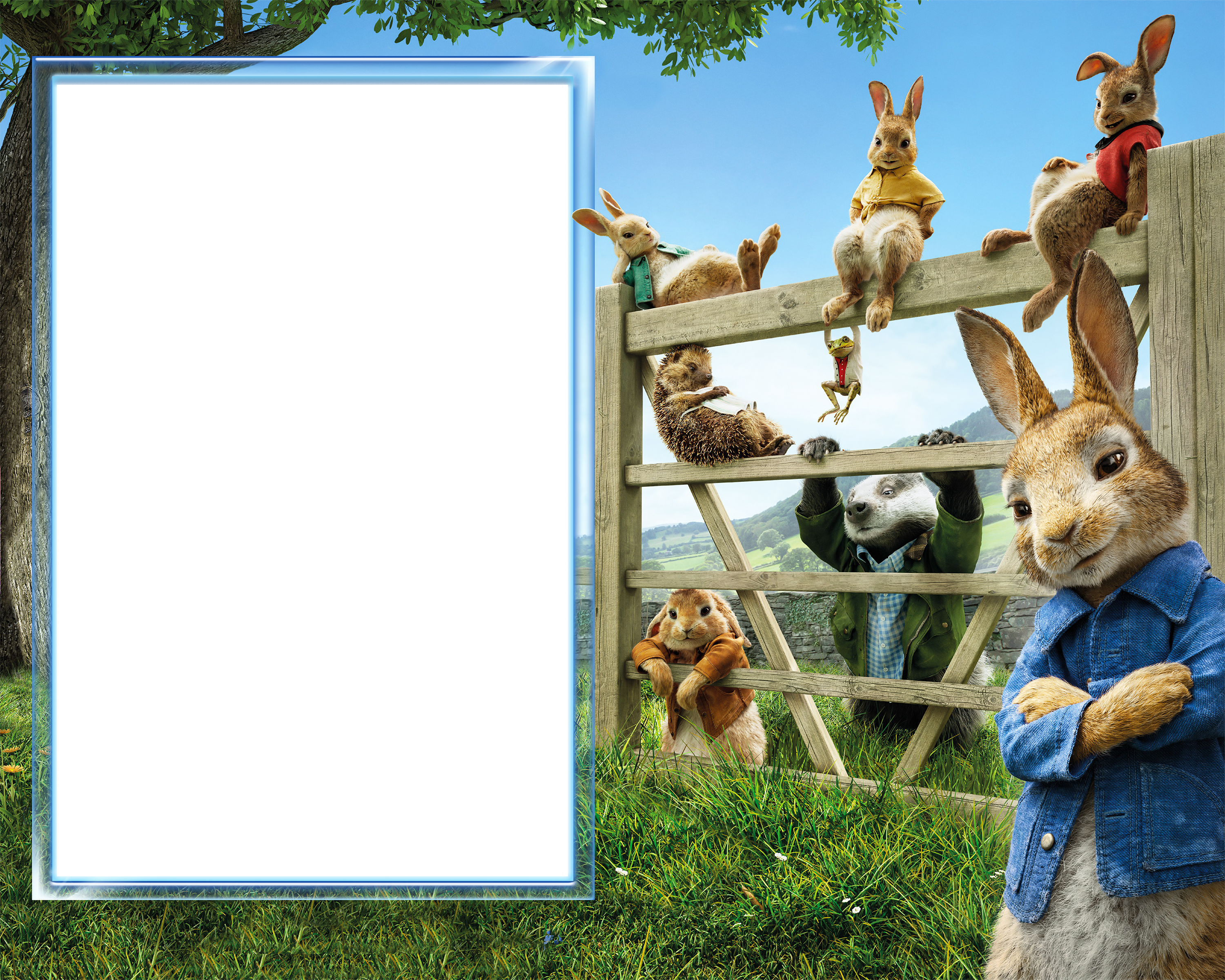 Peter rabbit transparent png. Clipart bunny frame